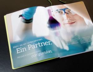 LTS Brandbook – Werbagentur LEHNSTEIN Koblenz Referenzen